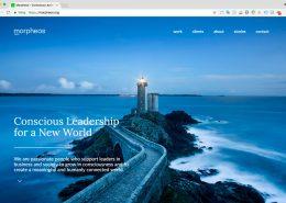 01 Website Morpheos - Startpagina
