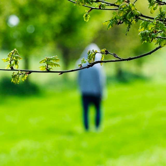 Ontwerp huisstijl en website voor Hoogeveen & Partners Psychologen