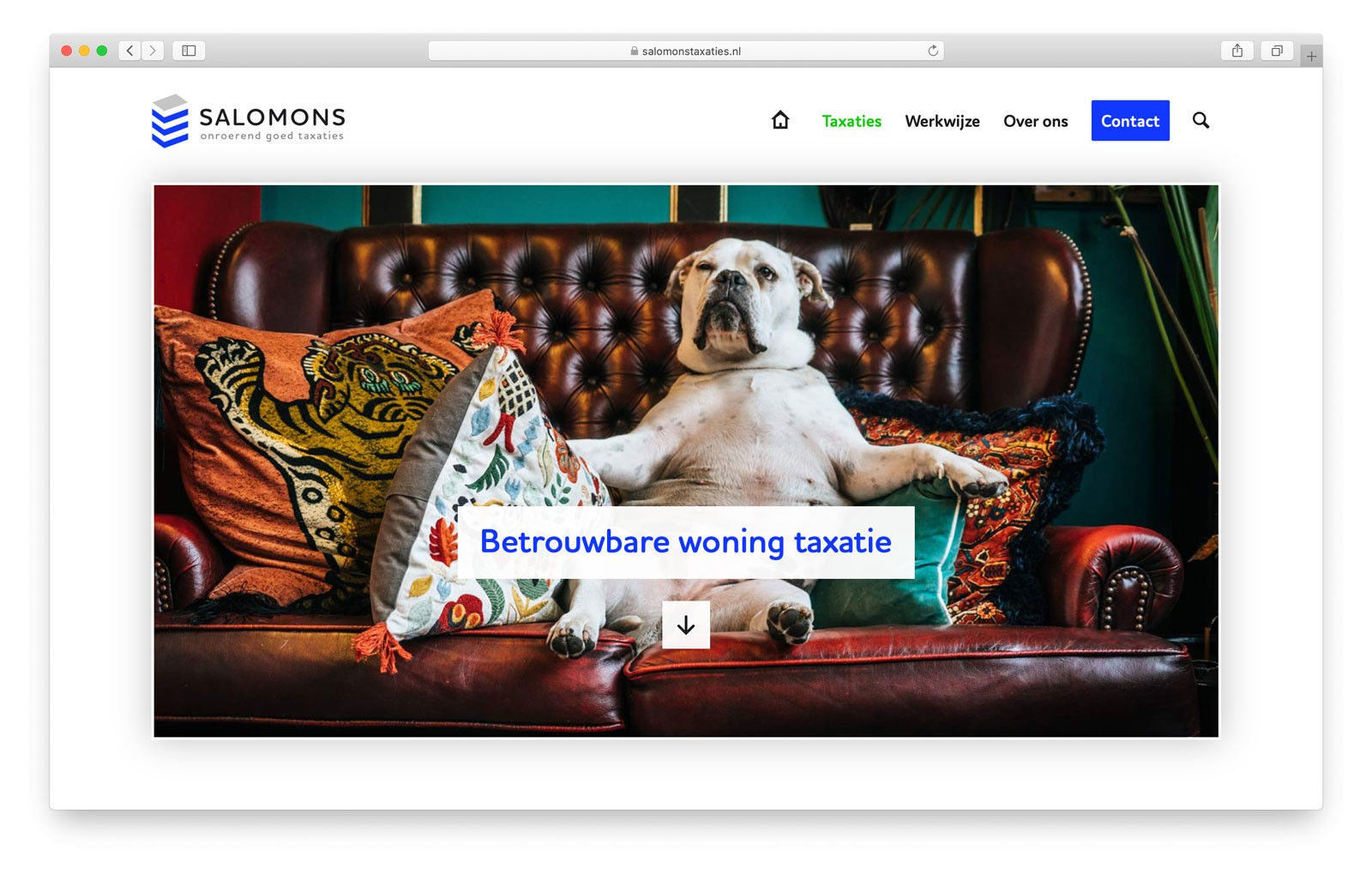 Salomons Taxaties - Impressie Taxaties pagina website