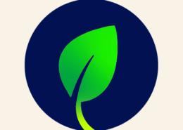 Ontwerp huisstijl, realisatie website voor Thuis Vitaal