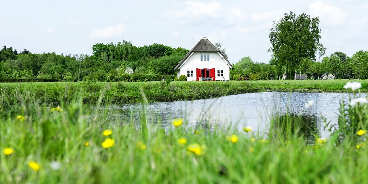 Ontwerp huisstijl, ontwerp en bouw website Hoogeveen & Partners Psychologen
