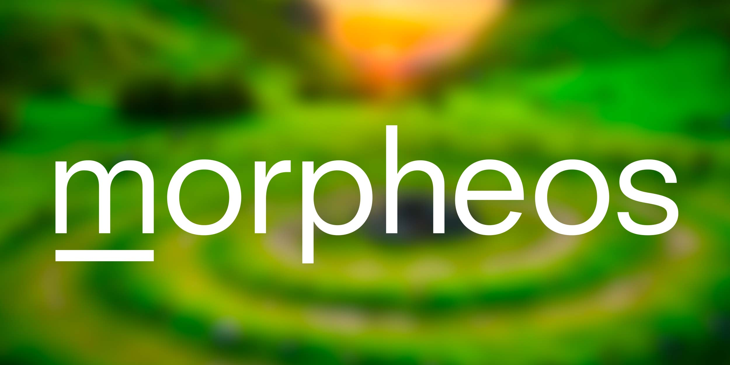 Ontwerp logo Morpheos