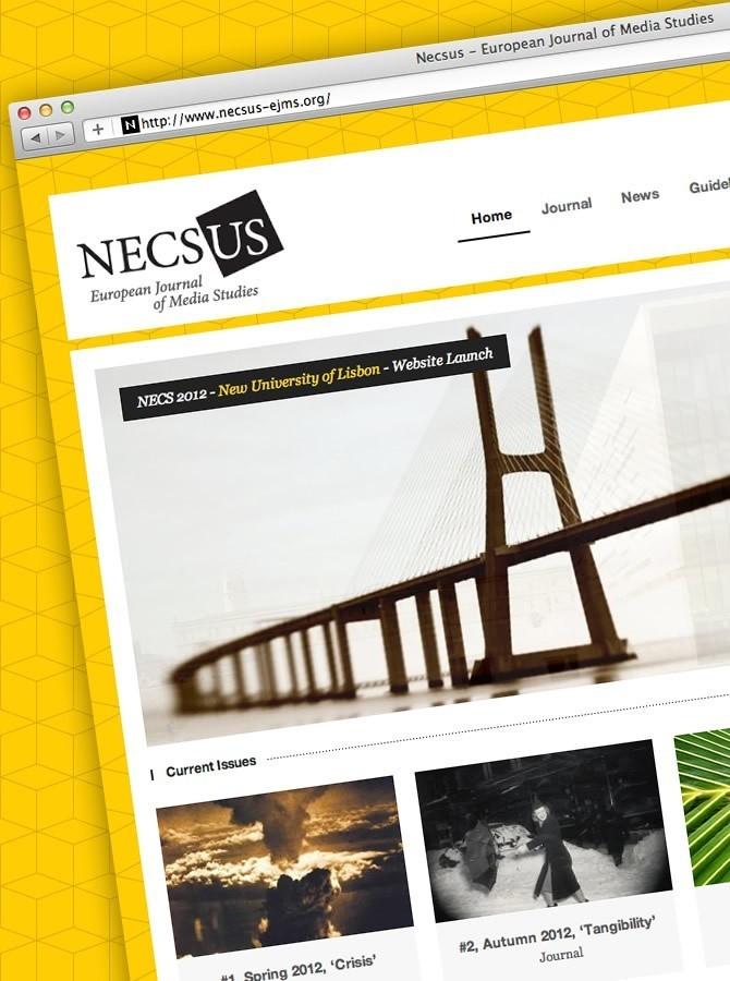 Ontwerp en bouw website Necsus